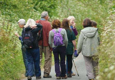 recording group walk near Bude by Niki Clear